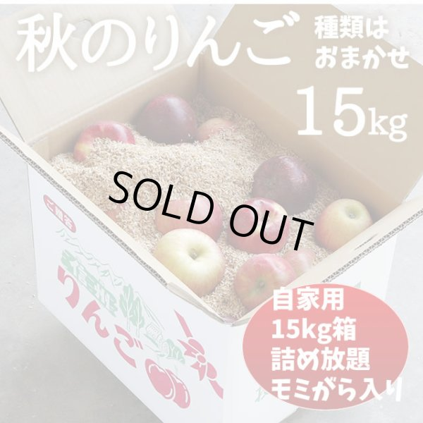 画像1: 秋のりんご 15kg (1)