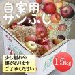 画像1: 自家用サンふじ 15kg(モミ殻入り) (1)