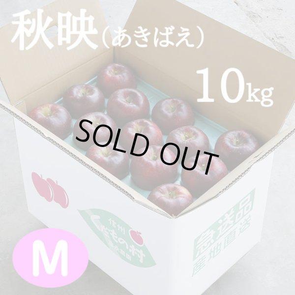 画像1: 秋映(あきばえ)10kg: M (1)