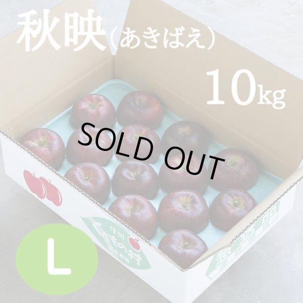 画像1: 秋映(あきばえ)10kg: L (1)