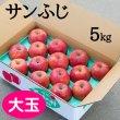 画像1: 贈答用サンふじ 5kg: 大玉 (1)