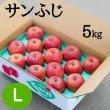 画像1: 贈答用サンふじ 5kg: L (1)