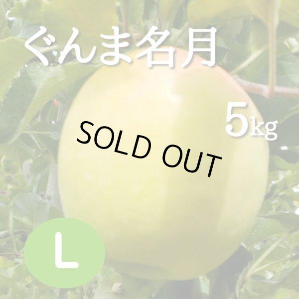 画像1: ぐんま名月5kg: L (1)