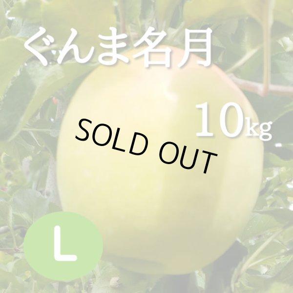 画像1: ぐんま名月10kg: L (1)