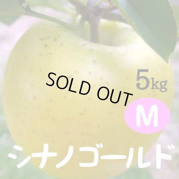 画像1: シナノゴールド 5kg: M (1)