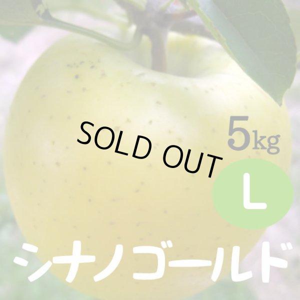 画像1: シナノゴールド 5kg: L (1)