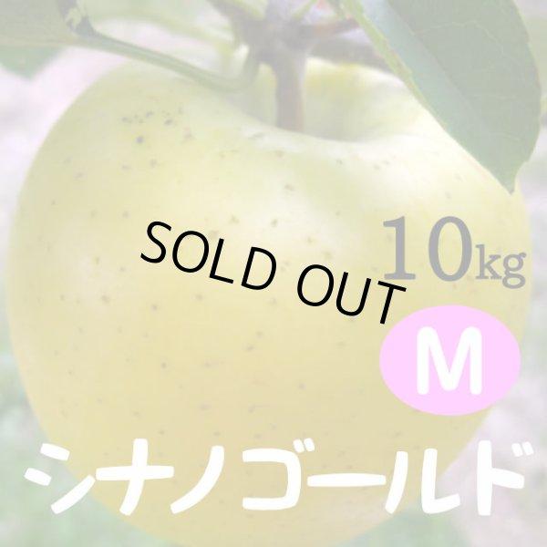 画像1: シナノゴールド 10kg: M (1)