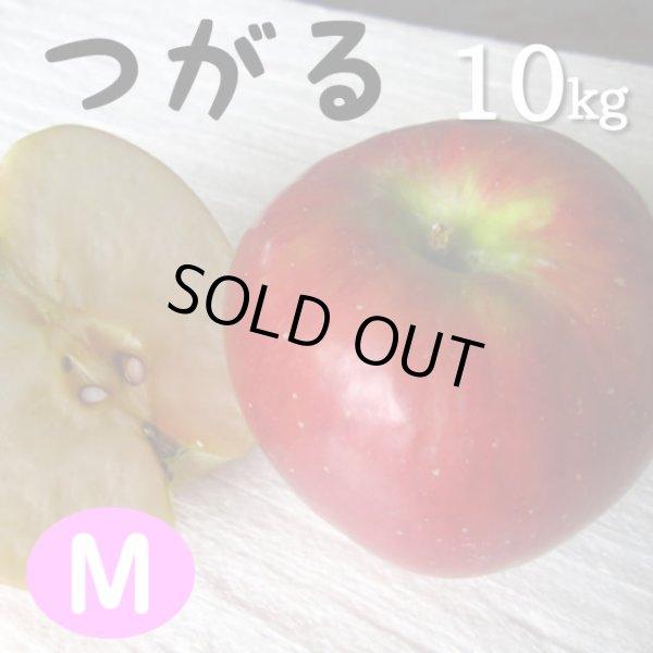 画像1: つがる10kg: M (1)