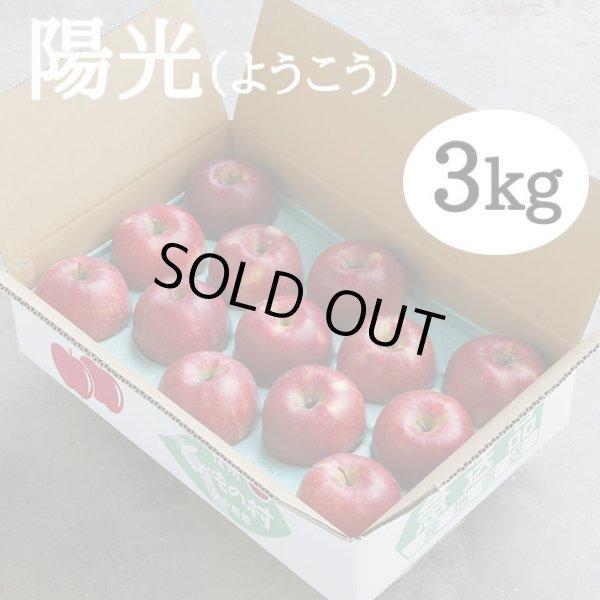 画像1: 陽光3kg (1)